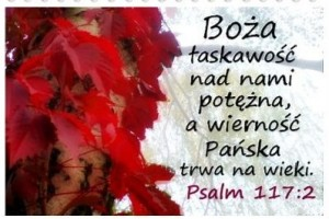 POZWÓLMY W ŻYCIU DZIAŁAĆ ŁASCE BOŻEJ
